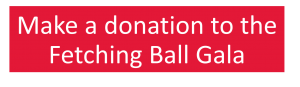 Make a donation to the Fetching Ball Gala