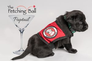 The Fetching Ball Puptail cocktail glass with black puppy
