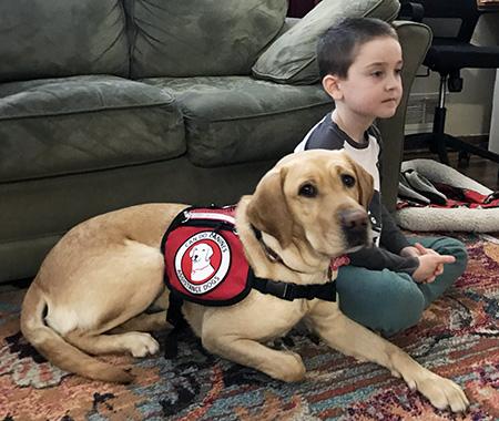 small boy sitting beside yellow dog