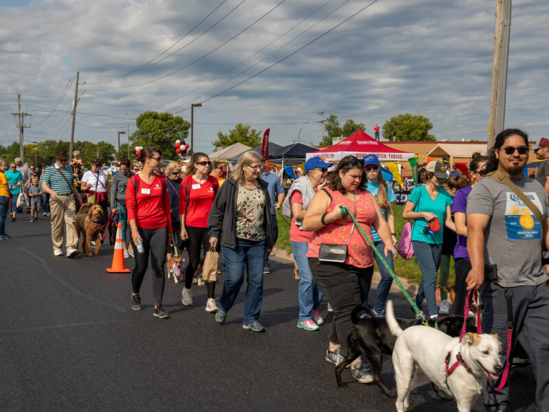 crowd of people and dogs participating in a walking event on street