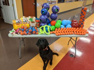 large black dog sitting in front of table full of dog toys